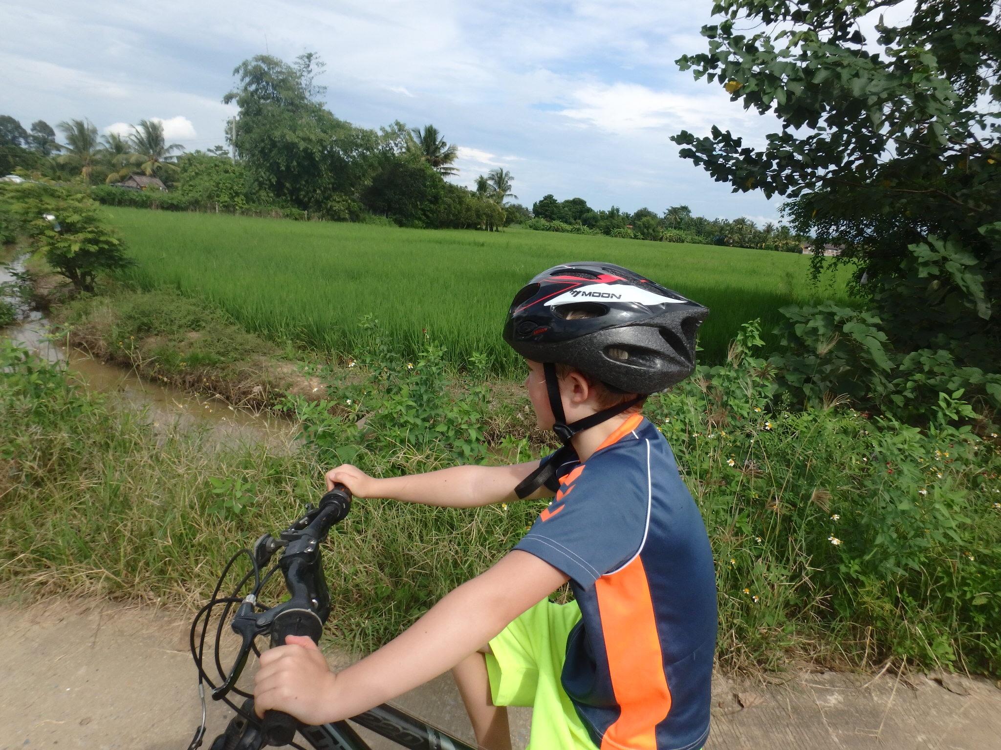 Chiang Mai på cykel