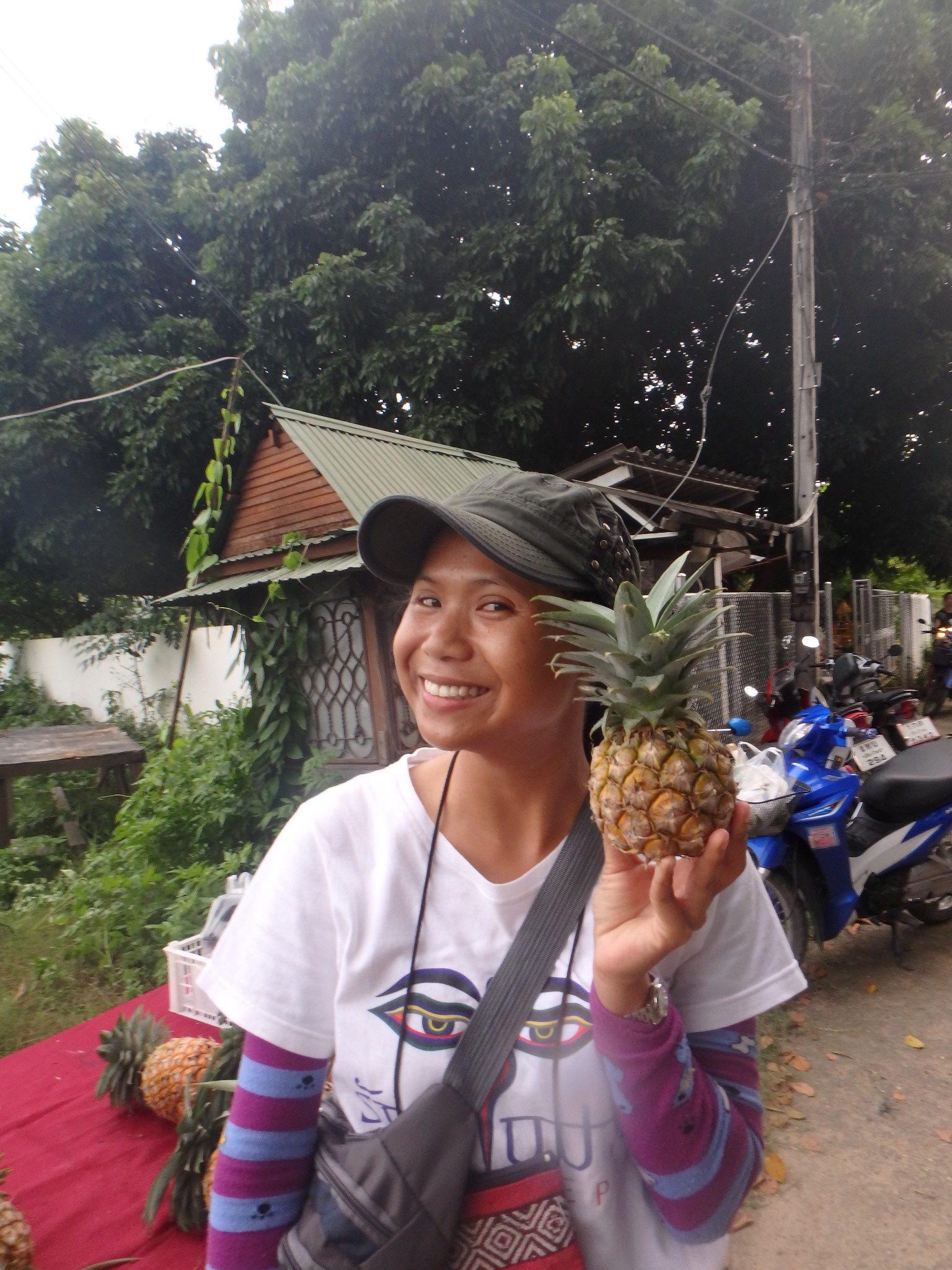 Vores guide med en lille og sød ananas